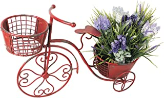 Best metal bike flower holder Reviews