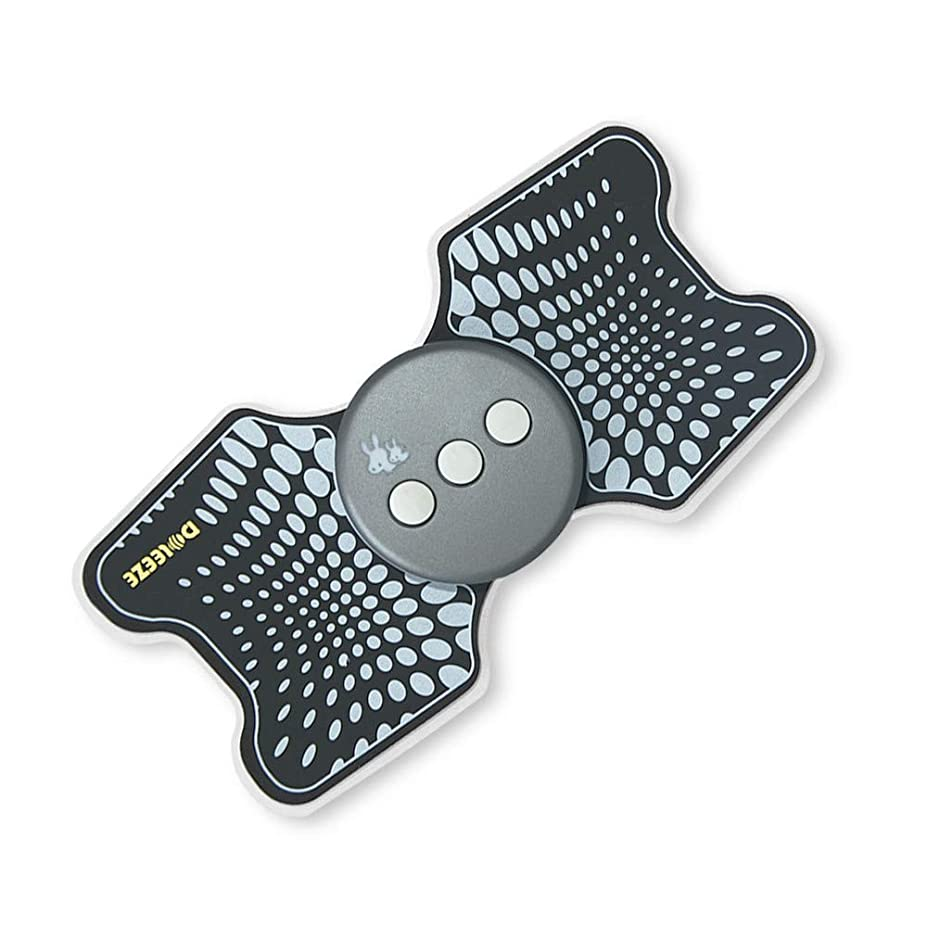 Lekocミニマッサージャー 低周波治療器 9モード 十段階調整 USB充電式 筋肉 背中 足 子牛手 首 肩 腰 腹 全身用 軽量 携帯便利 家庭用 運動用 (ブラック)
