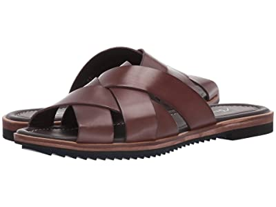 Bacco Bucci Giallini (Brown) Men