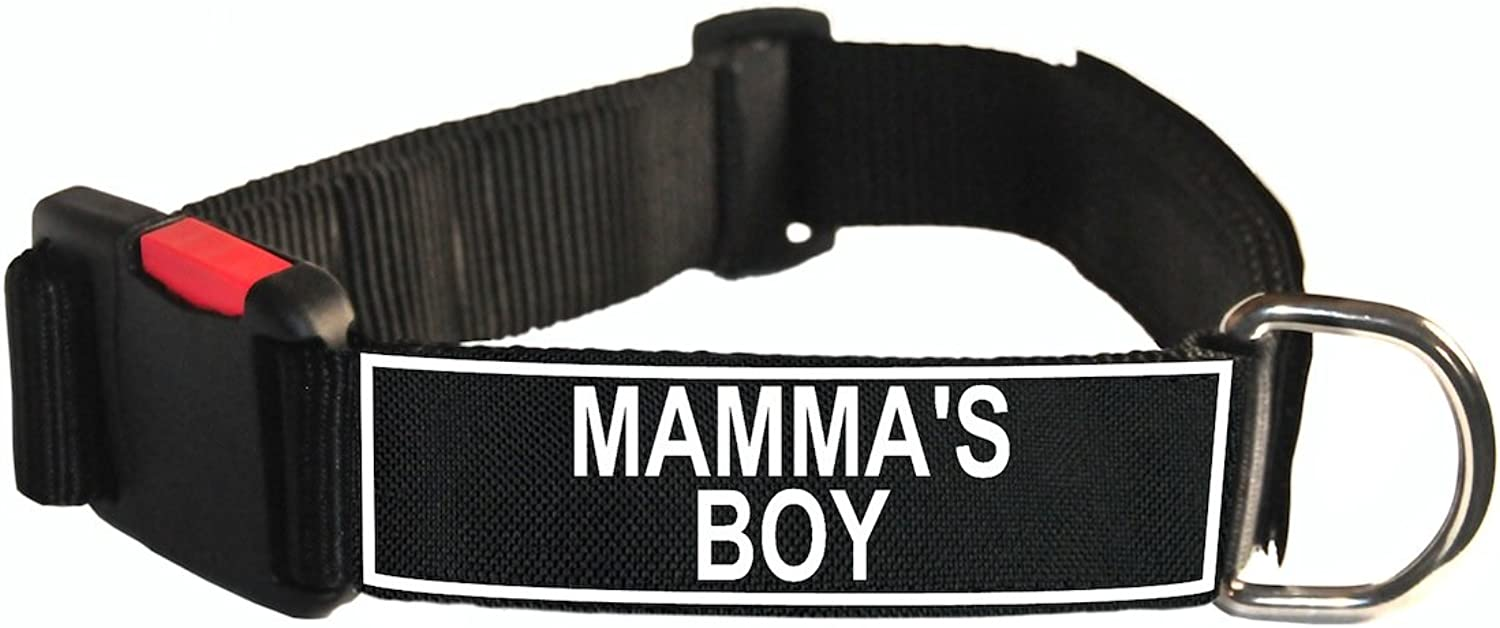 Dean & Tyler Nylon Patch Dog Collar with Mamma's Boy Patches, Medium, Fits Neck 21 to 26Inch