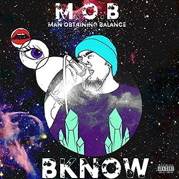 M.O.B. Man Obtaining Balance