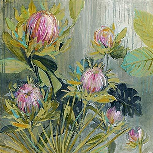 Rahmen-Kunst Keilrahmen-Bild – Carol Robinson: Protea Catching Leinwandbild Kap-Blumen Südafrika