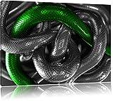 ineinander verschlungene Schlangen schwarz/weiß Format: