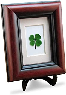 Clovers Online Mahogany Frame with a Genuine Four Leaf Clover