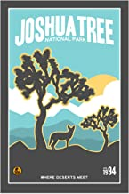 Joshua Tree National Park California Travel Art Print Poster by Matt Brass (12 x 18)