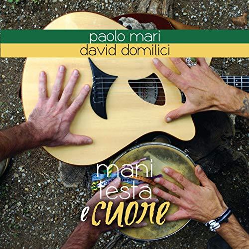 Samba da minha terra (feat. David Domilici)