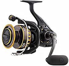Best daiwa saltiga 4000 spinning reel Reviews