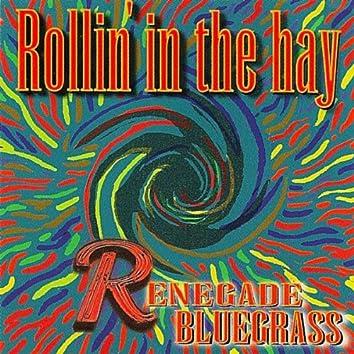 Renegade Bluegrass