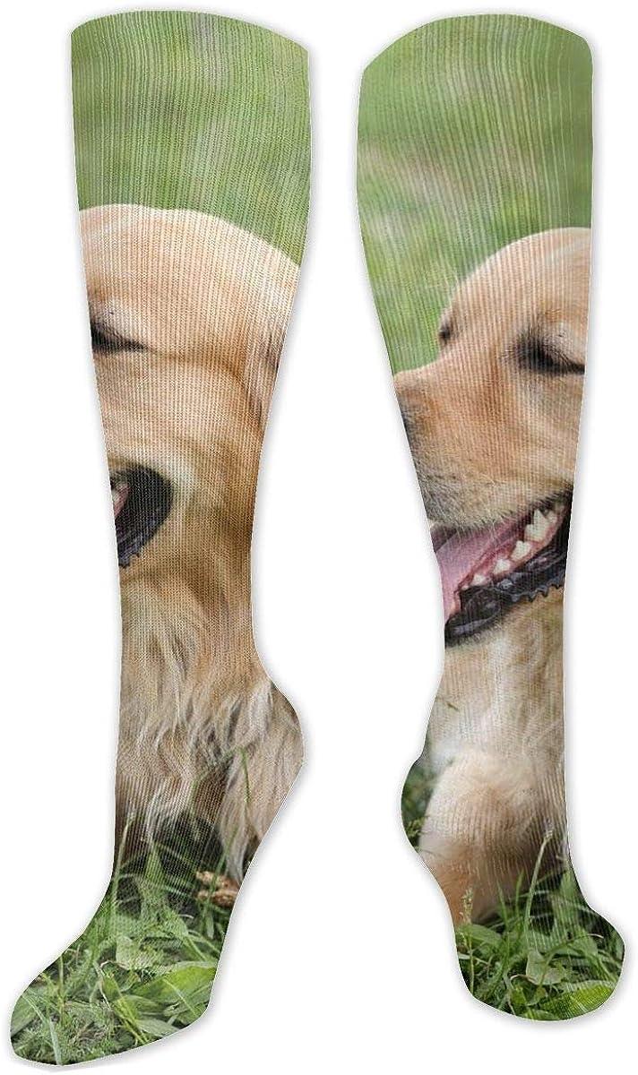 Retriever Knee High Socks Leg Warmer Dresses Long Boot Stockings For Womens Cosplay Daily Wear