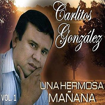 Una Hermosa Mañana (Vol.1)