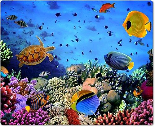 Merchandise for Fans Mauspad/Mouse Pad aus Textil mit Rückseite aus Kautschuk rutschfest für alle Maustypen Motiv: Meer mit Korallenriff und Fischen Unterwasseraufnahme | 006