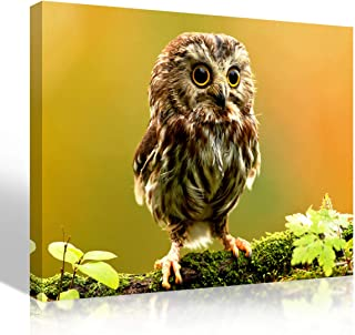 Purple Verbena Art Canvas Print Painting of Cute Owl on Wood Picture Home Wall Art Lovely Animal Nature Landscape Photo Artwork Wall Decoration Gifts for Living Room Bedroom-Framed 12x16 Inches