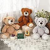 MaoGoLan Teddy Bear Bulk Set of 3 Stuffed Bears in 3 Colors Brown/Grey/Tan Soft Teddy Bear Stuffed Animals Plush Toys 13.5 Inch for Boys and Girls