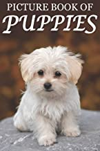 Picture Book of Puppies: Picture Book of Puppies: For Seniors with Dementia [Cute Picture Books]