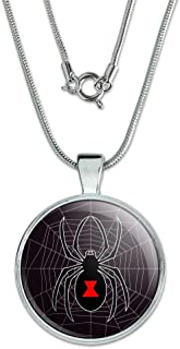Black Widow Spider on Web 1