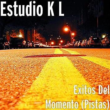 Exitos Del Momento (Pistas)