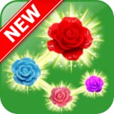 Rose Paradise - most popular flower matching games for adults free download and offline to play
