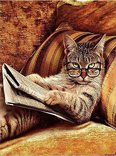 Cukol 5d Diamond Painting Kits for Adults UK Kids Women Gift Animals Bead Crystal Rhinestone Craft Easy Creations Gem Jewel Dimond Picture Art Paint by Diamond Art Kit Full Drill Dotz Cute Kitten