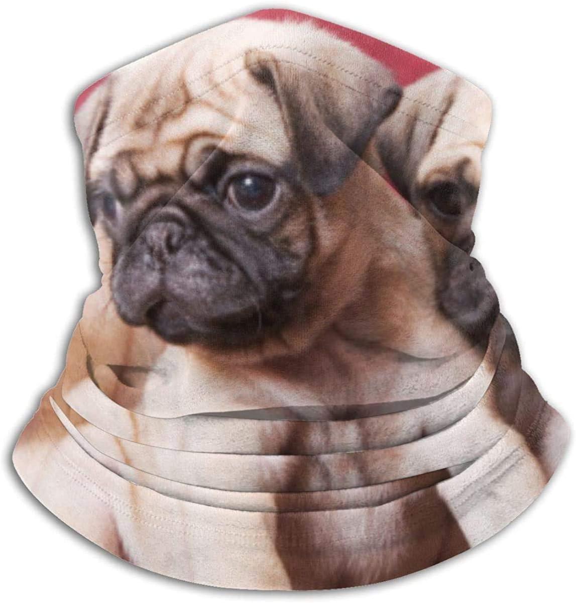 Lastbest Pugs, Sofas, Blankets, Color Photographs Print Neck Warmer Multifunction Scarf Hat Neck Gaiter Neck Cap Bala Windproof Neck Heating Wrap Outdoor Sports