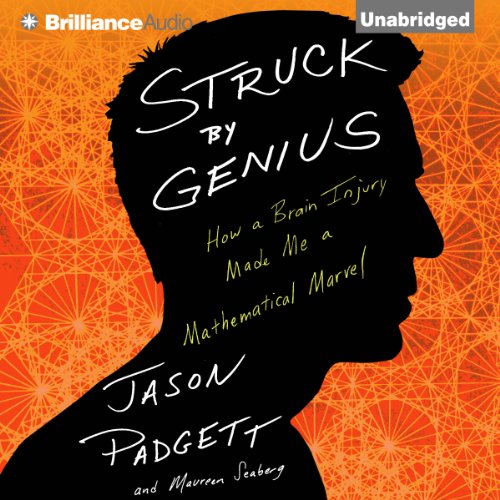 Struck by Genius audiobook cover art