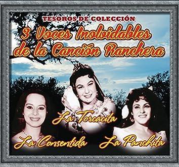 Tesoros de Colección - la Torcacita - la Panchita - la Consentida