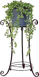 Best indoor money plant stand Reviews