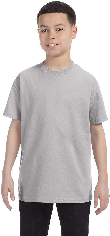 Hanes Big Boy's Lay Flat Collar Tagless T-Shirt, Light Steel, X-Small