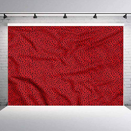 5x5FT Vinyl Backdrop Photographer,Red and Black,Abstract Grid Background for Baby Birthday Party Wedding Graduation Home Decoration