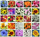 25 Heirloom Flower Seed Packets Including 20+ Varieties Flower Seeds - Forget Me Not, Sunflower, Marigold, Zinnia Lilliput, Snapdragon, Hummingbird & Butterfly Wildflower Seeds and More