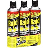 Raid Wasp and Hornet Spray 17.5 Ounces - Pack of 3
