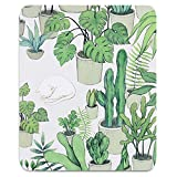 Custom Original Nature Series Mouse Pad (Cactus and Cat)