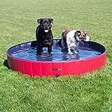 FrontPet Foldable Extra Large Dog Pet Pool Bathing Tub, Kiddie Pool, 60 Inch X 12 Inch