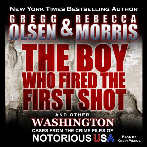 The Boy Who Fired the First Shot  audiobook cover art
