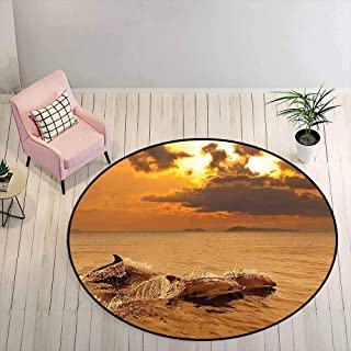 Outdoor Patio Rug 6.5 ft Round - Sea Animals Non-Slip Rug Dolphins at Sunset with Water Splashes Aquatic Playful Animal at...