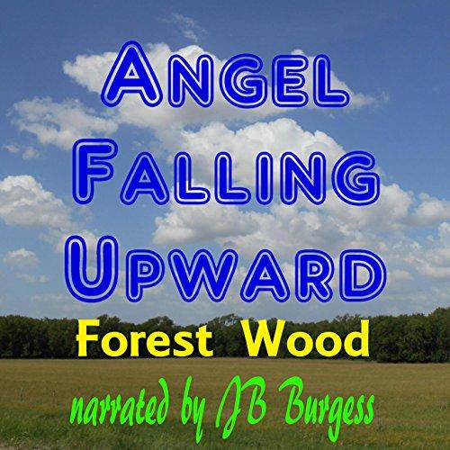 Angel Falling Upward audiobook cover art