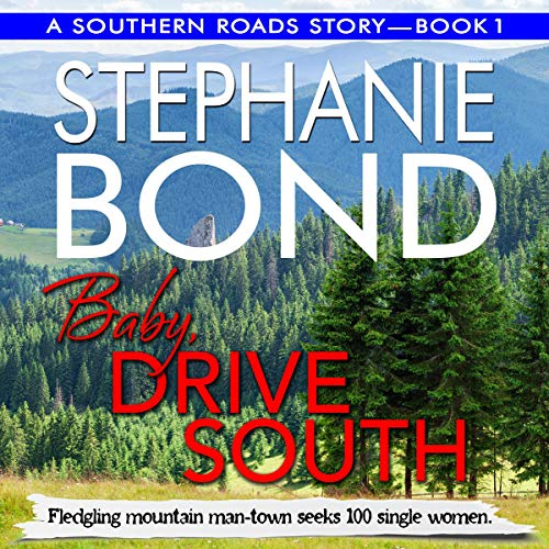 Baby, Drive South  cover art
