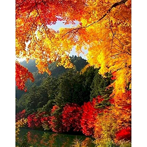 Pintura de paisaje de otoño por números paisaje pintura al óleo de bricolaje por números sobre lienzo marco pintura digital a mano W5 40x50cm