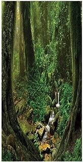 3D Decorative Film Privacy Window Film No Glue,Nature Decor,Wonderland Forest Nepal Asian Jungle Rainforests Habitat Wild Primeval Picture,Green,for Home&Office