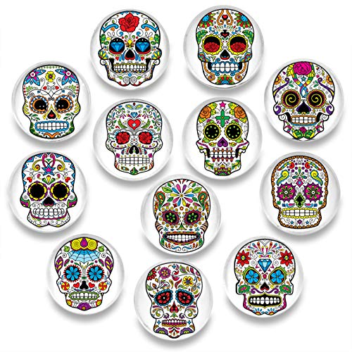 Pack-12 Skull Refrigerator Magnets, Death's Head Style Fridge Magnets, Cosylove Cute Magnets for Decorative Fridge, Home Decoration, Photos, Whiteboards, Calendar, Bulletin Board