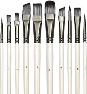 Paint Brushes Set for Acrylic Gouache Oil Watercolor Canvas, Artist Face and Body Professional Painting Kits Art Paintbrushes with Synthetic Nylon Tips 10 Pack