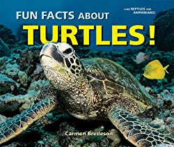 Image: Fun Facts About Turtles! (I Like Reptiles and Amphibians!) | Paperback: 24 pages | by Carmen Bredeson (Author). Publisher: Enslow Publishers (March 1, 2009)