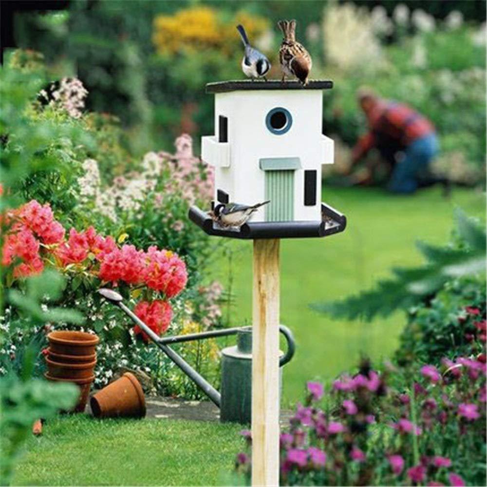 Comedero para pájaros transparente Alimentador de pájaros paisajes exteriores Jardín Aterrizaje del pájaro casa del pájaro Alimentos decoración del jardín Jardín Semillas silvestres de aves alimentado: Amazon.es: Hogar