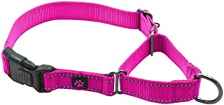 gogo martingale dog collar