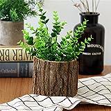 maceta de madera con corteza sauce natural cactus pequeño suculentas macetas de troncos decorativas...