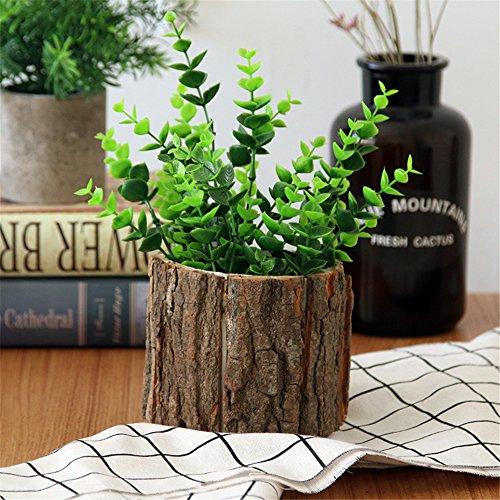 maceta de madera con corteza sauce natural cactus pequeño suculentas...