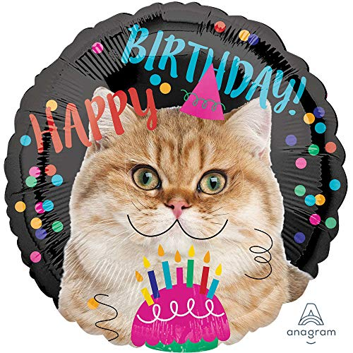 amscan 3539801 Happy Birthday Folienballon, Katze