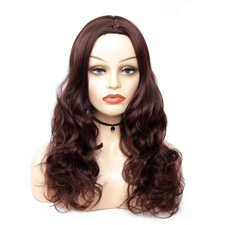 毎月隔離するに向かってHOHYLLYA 人工毛ウィッグ茶色の長い巻き毛のかつら女性のパーティーのかつらのための耐熱性繊維の毛髪のかつら (色 : ブラウン, サイズ : 65cm)