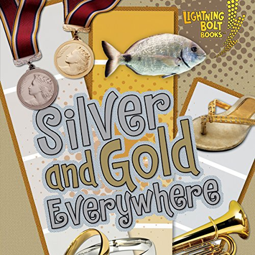 Silver and Gold Everywhere audiobook cover art