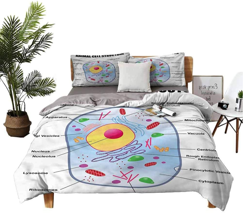 Educational 3 Piece Bed Sheet Set for 現金特価 正規激安 Animal Study Children Cell