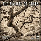 2020 Calendar: The Nature of T...